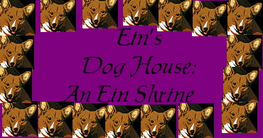 Ein's Dog House: An Eing Shrine!